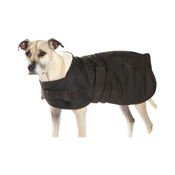 Oilskin Dog Coat