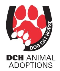 DCH Animal Adoptions